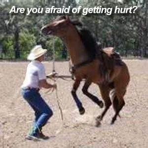 Are you afraid of horses?