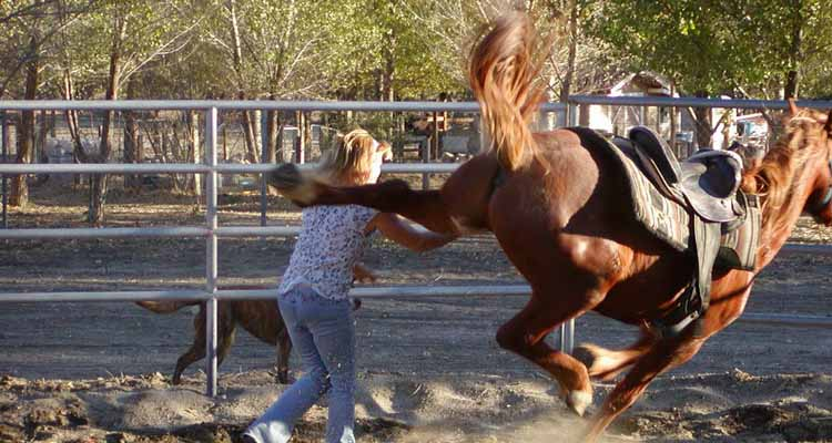 Have you had a horse-related accident that has taken your confidence away?
