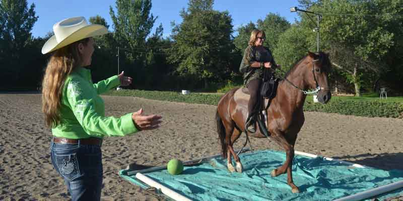 Are you looking for the answers to get you back in the saddle?